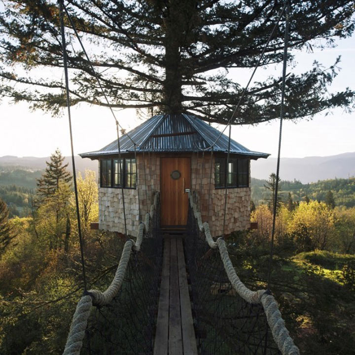 Как построить дом вашей мечты на дереве
