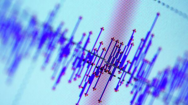 У берегов Новой Зеландии произошло землетрясение магнитудой 6,2 Лента новостей