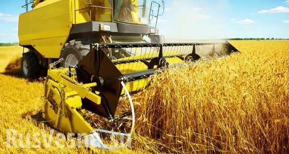 Сельскохозяйственный Крым вы…