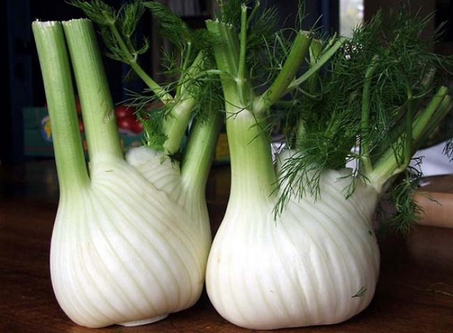 9 съедобных растений, которые можно вырастить прямо на кухне