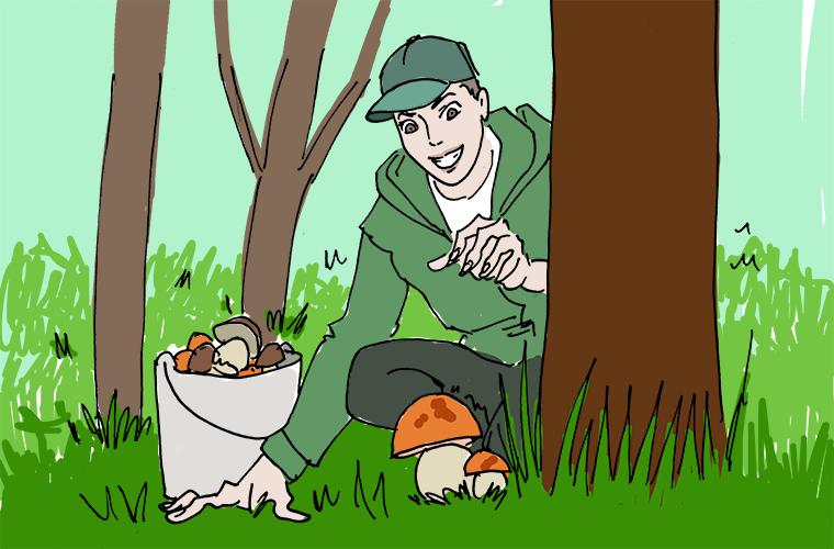 Сбор грибов в мире, забавно, иностранцы, лето, люди, мнение