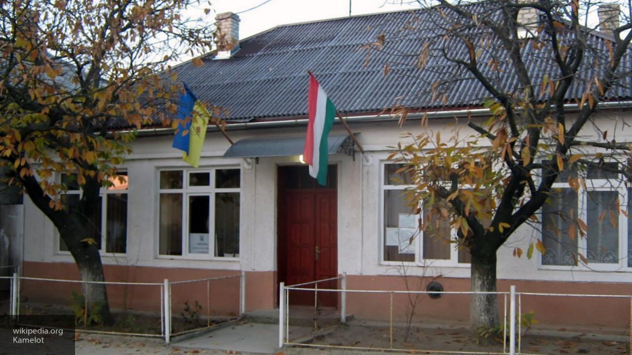 Тука: Украина может потерять контроль над Закарпатьем