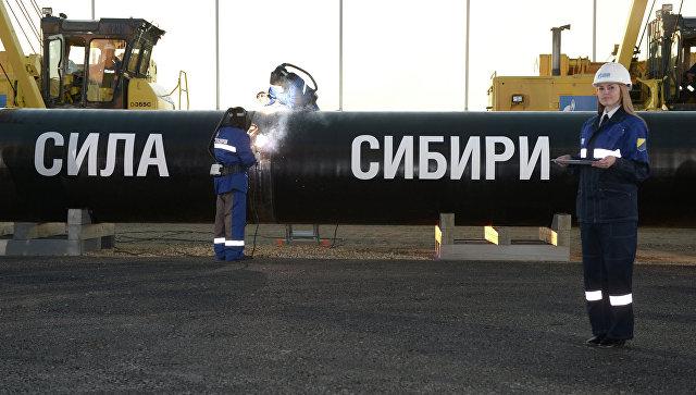 """Газпром"" построил 1580 километров газопровода ""Сила Сибири"""