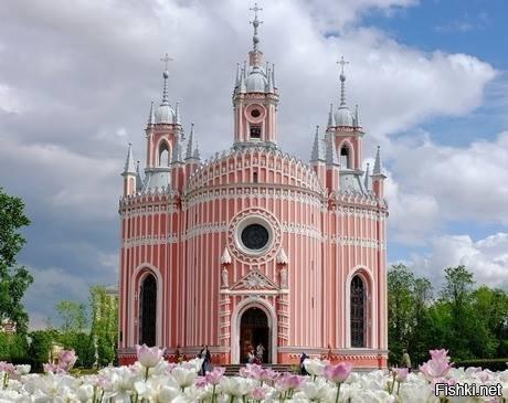 14-Чесменская церковь Красивые здания, СПб, питер