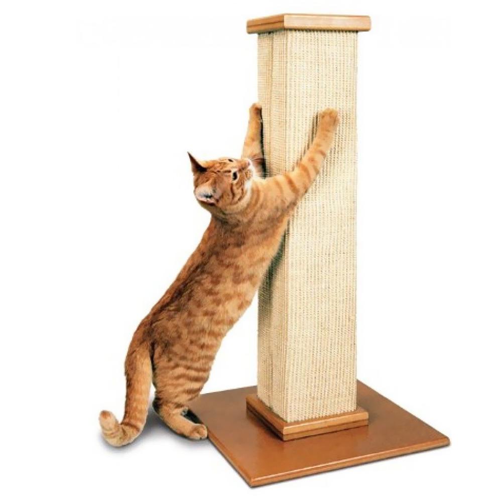 когтеточка для кошек схема