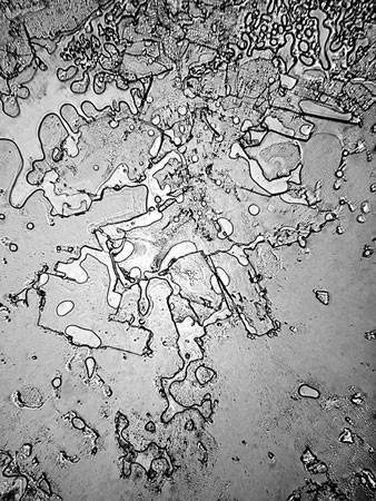 Слезы под микроскопом. Этот уникальный эксперимент раскрыл удивительный факт!