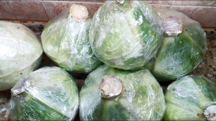 100% способ сохранить капусту до следующего урожая в погребе, подвале, на чердаке или балконе