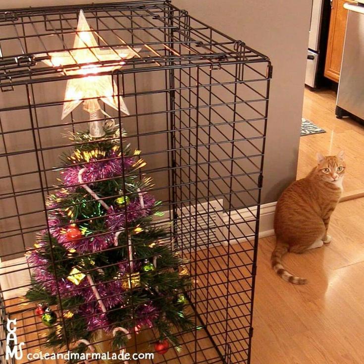 Ёлка в доме с котом