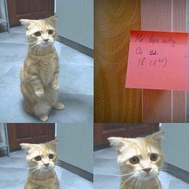 Жена оставила записку