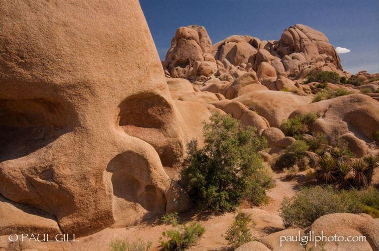 """16. Скала """"Череп"""", Национальный парк Джошуа-Три, Калифорния красота, мир, природа"""