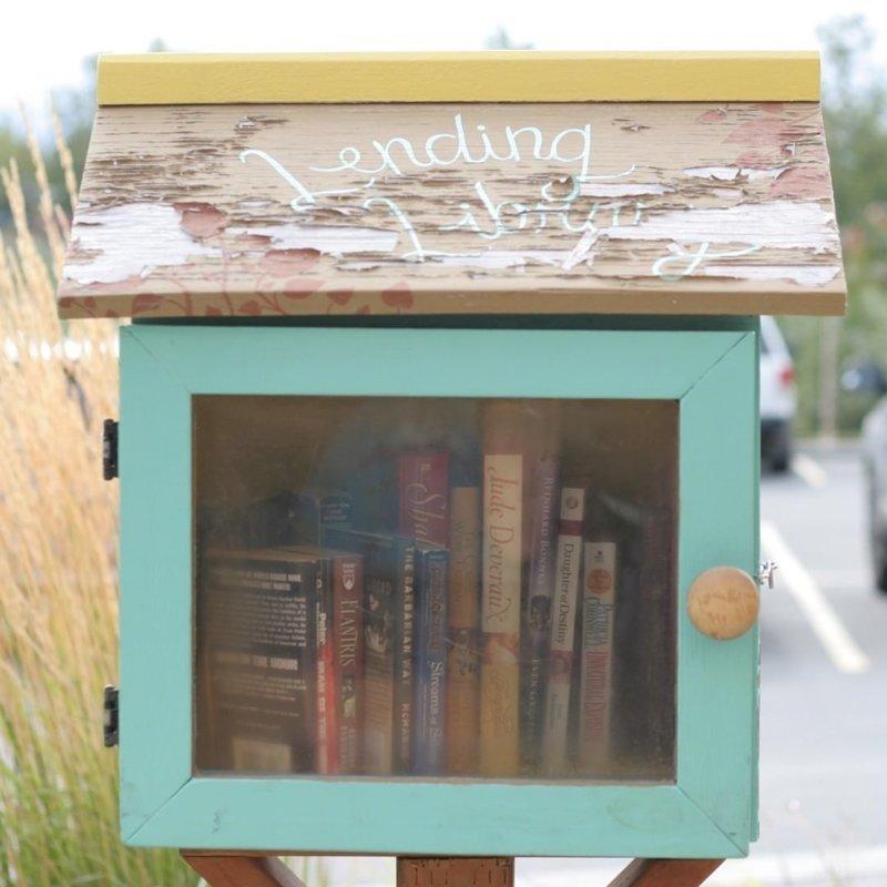 Уличные библиотеки аляска, жизнь, лось, медведь, путешествие, сова