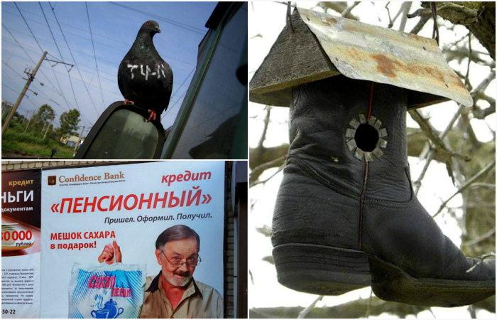 Обычные фотографии, которые можно было сделать только в России.