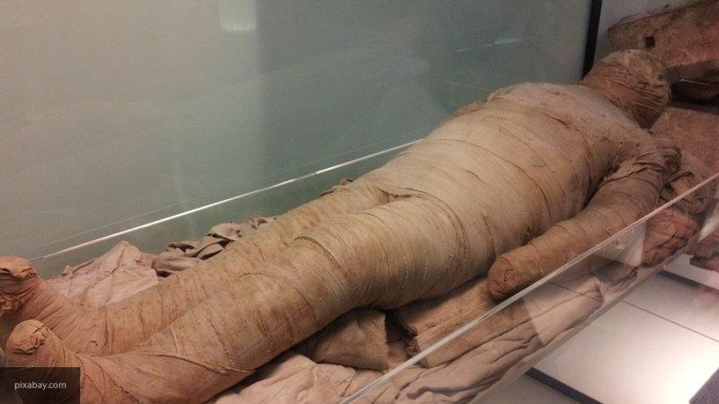 Ученые обнаружили мумию личного окулиста египетского фараона Птолемея