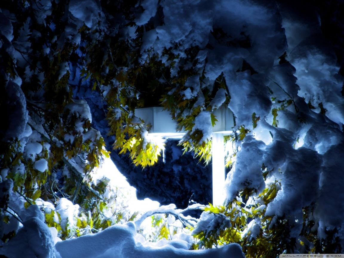 Красивые фотографии зимней природы