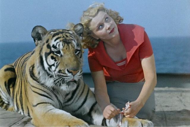 Трагедия жизни знаменитой укротительницы тигров
