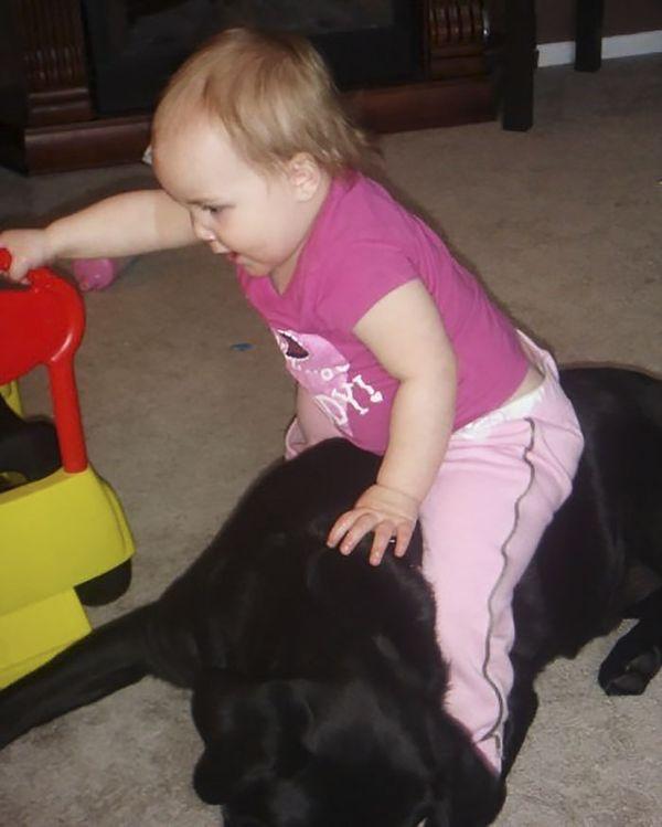 Просила сестру не дарить щенка моей новорожденной дочке. Никто меня не послушал, и вот, чем все закончилось…