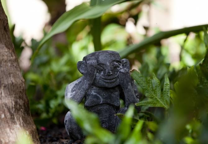 Тайна гавайских карликов