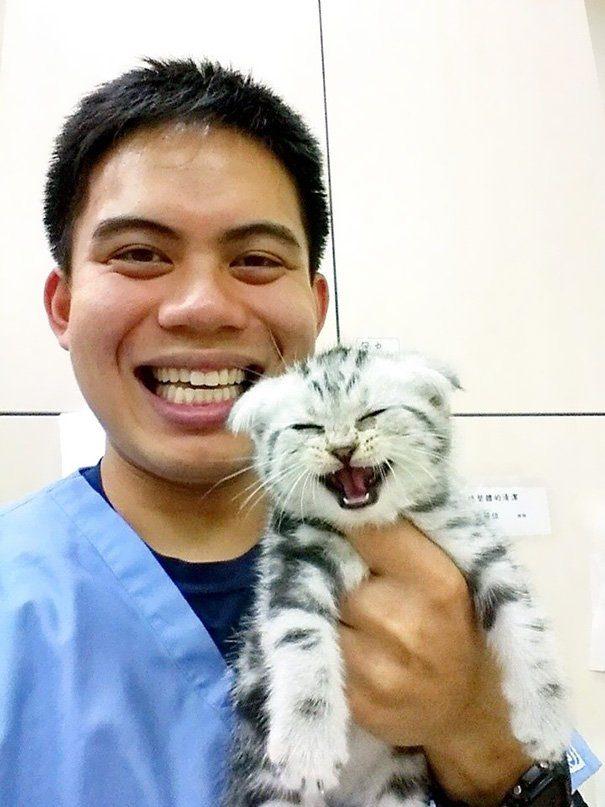 Плюсы от работы в ветеринарной клинике