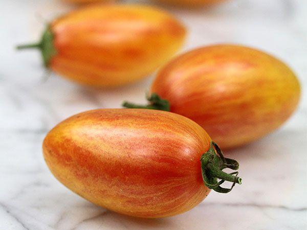 может томат стыдливый румянец отзывы фото практически непрерывно все