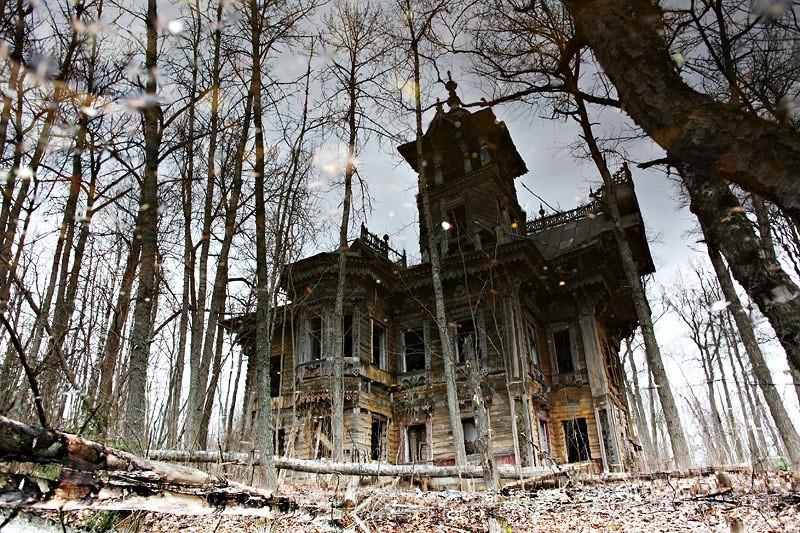 А иногда в заброшенных деревнях встречаются поистине шедевральные строения. история, россия, факты