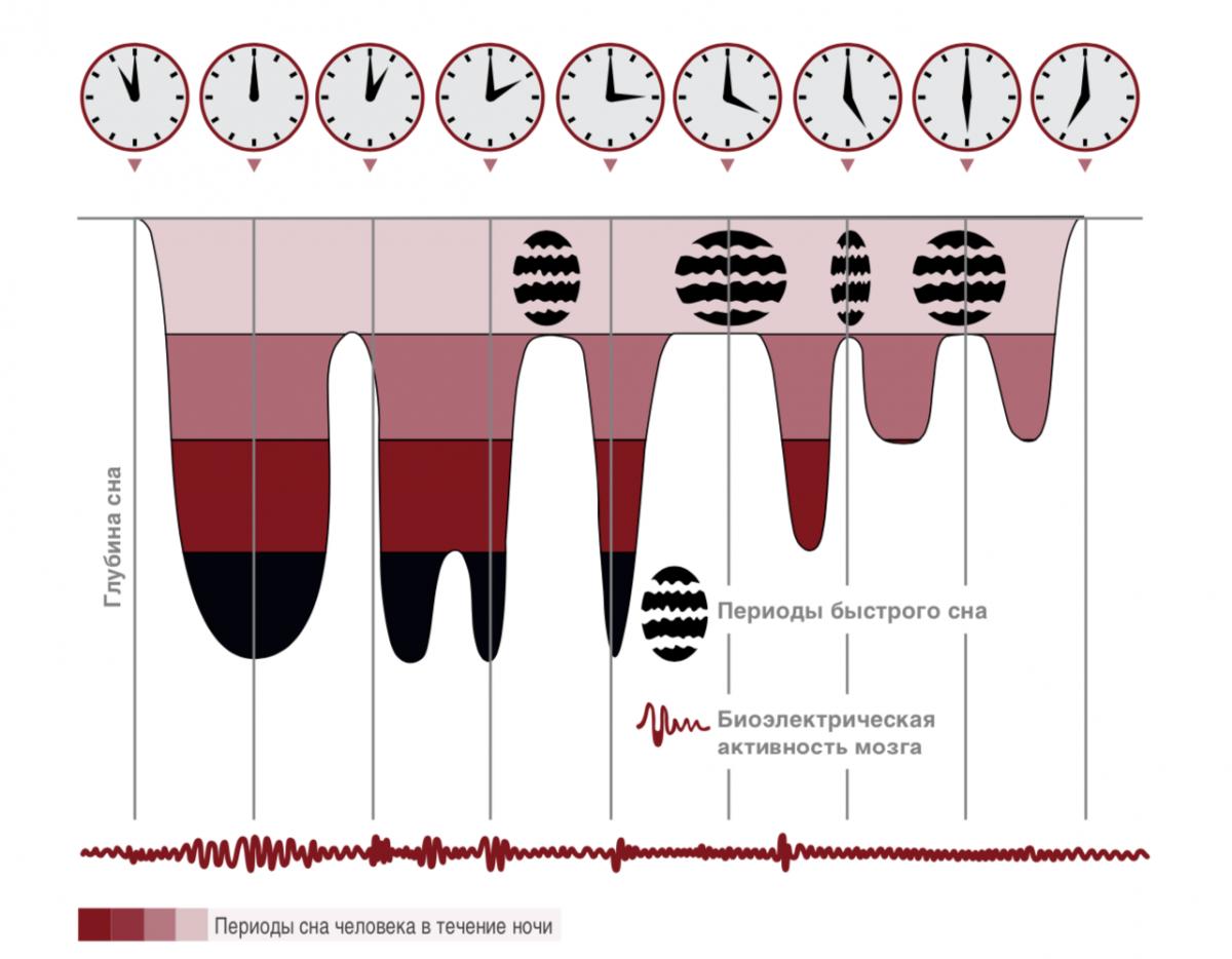Покушение на сон: можно ли спать меньше без вреда для здоровья