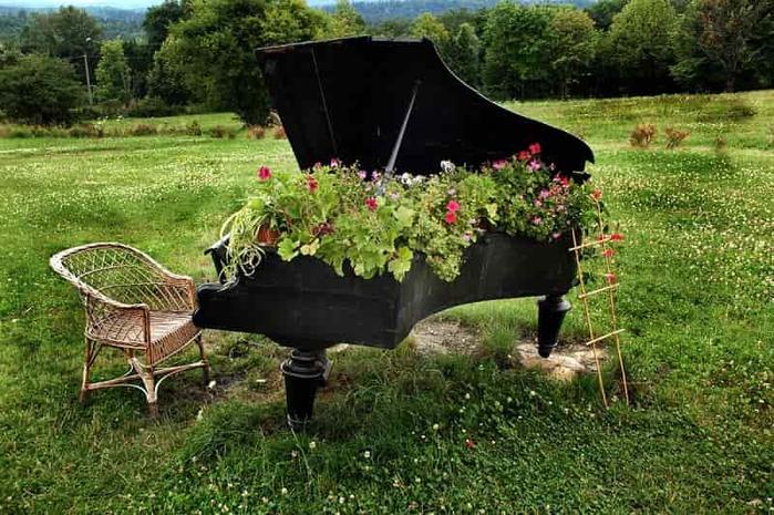 Чудесные цветочные клумбы своими руками