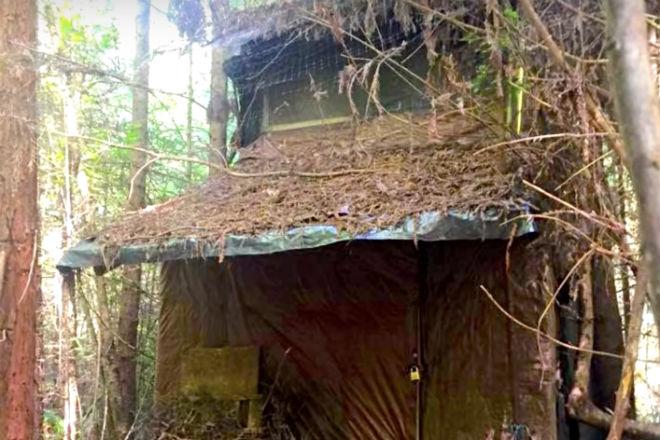Потайная хижина в лесу: находка лесного егеря исчезла через неделю решил, строение, деревьев, странного, внутри, хижины, месте, среди, участок, отдаленный, хозяин, никто, Ничего, сообщить, лесник, интересное, лесуhttpwwwyoutubecomwatchvvAOAu282sHUСамое, нашлось, учитывать, зайти