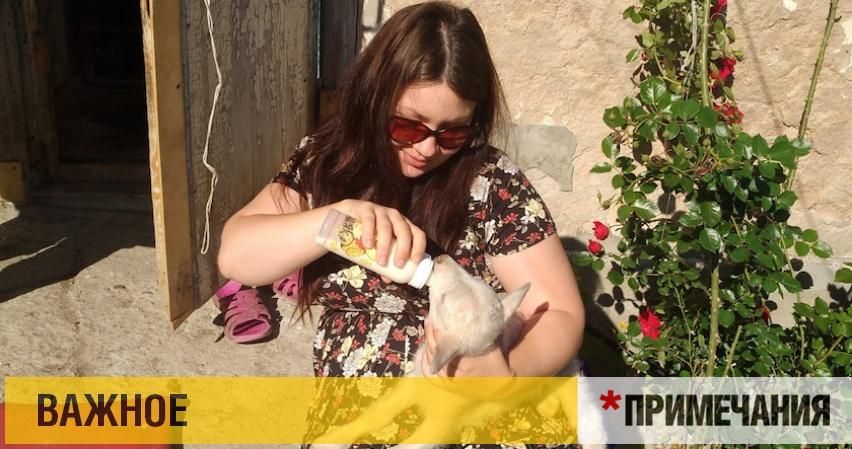 Волонтеров Севастополя травят за доброту