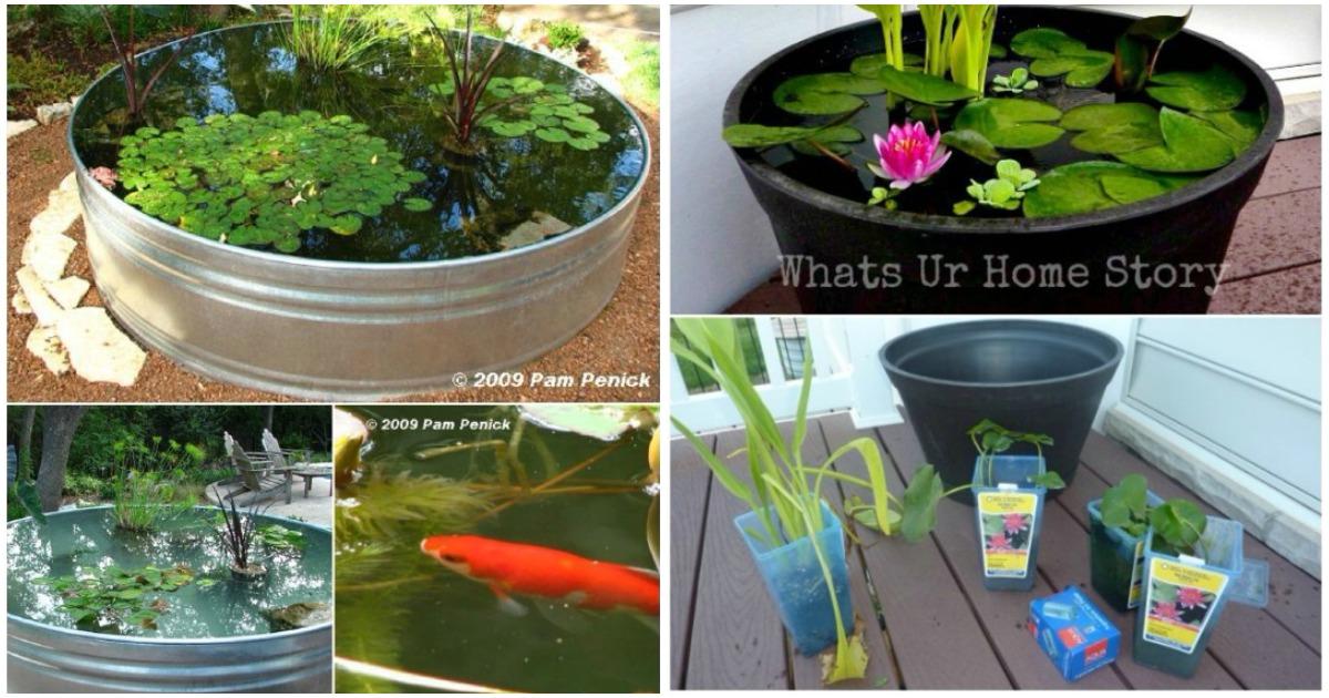 Идеи 10 мини-прудов: они создадут в вашем саду ощущение прохлады и свежести