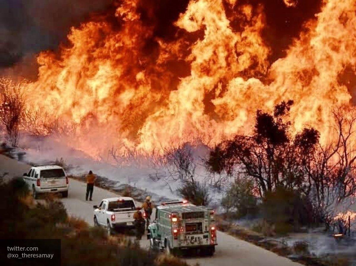 При масштабном лесном пожаре…