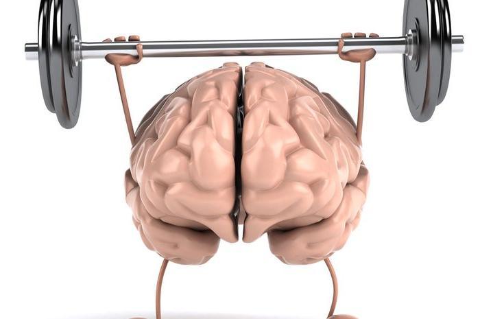Чтобы мозг не старел: 10 простых упражнений для тренировки памяти