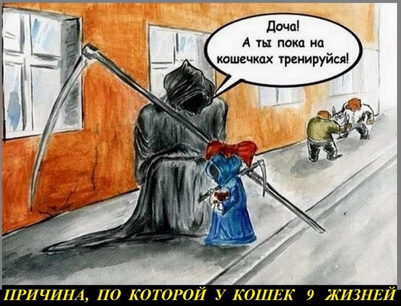 ЧЁРНЫЙ ЮМОР 6
