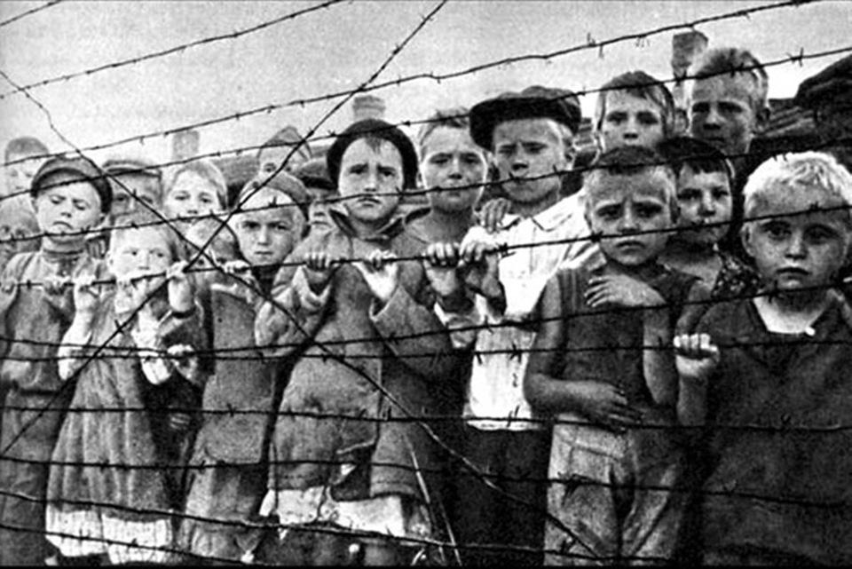 «Всего лишь забирали кровь»: Саласпилс призвали не называть концлагерем