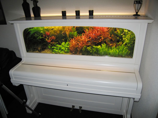 Пианино, преврашенное в аквариум. Наверное, это стоило колосаальных усилий