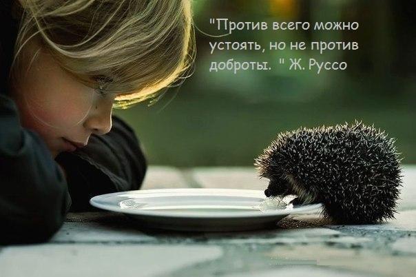 Чуть позитива)