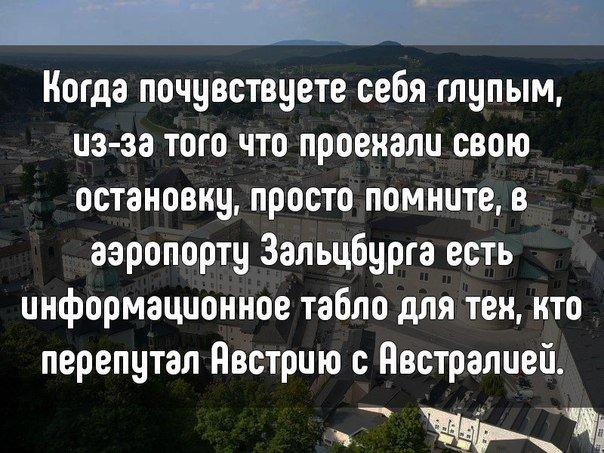 Дело жизни большинства жён -…
