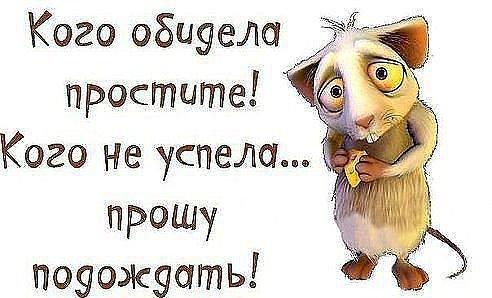 Мое прощеное воскресенье))))))))