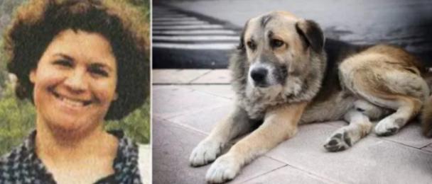 Причина по которой этот пёс часами грустит в храме ранит до слёз... Это пример настоящей верности и дружбы на всю жизнь