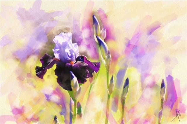 Alberto_Guillen_Flower_Paintings_14 (670x444, 239Kb)