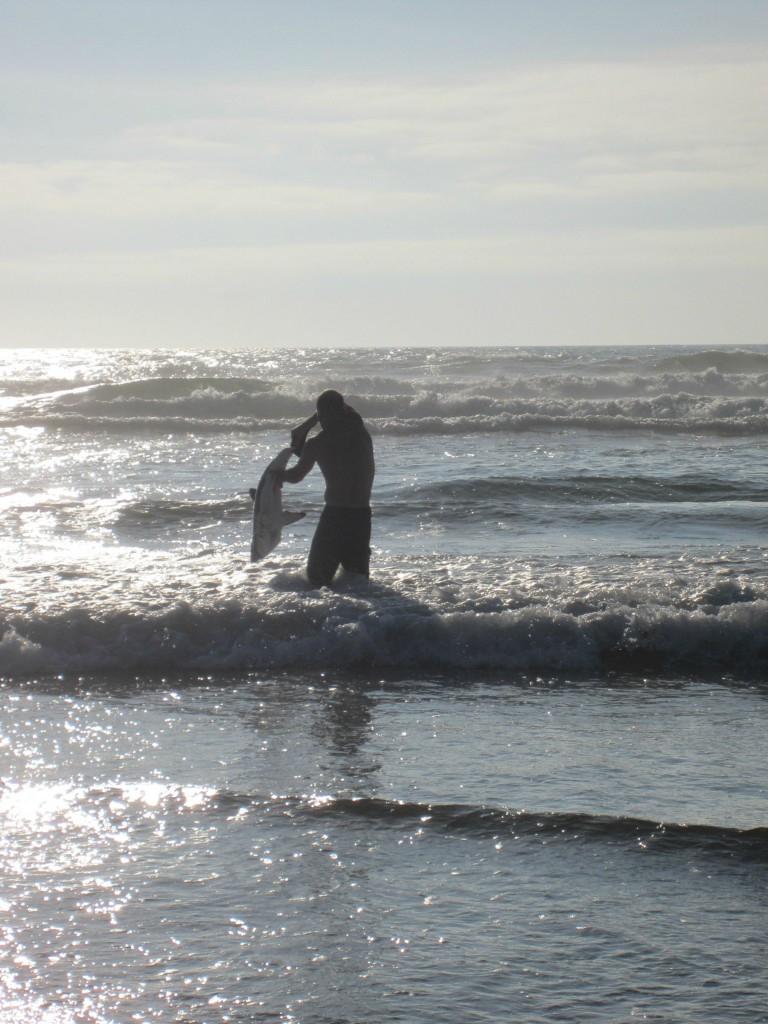 Как мужик спас севшую на мель акулу акула, мужик, спасение