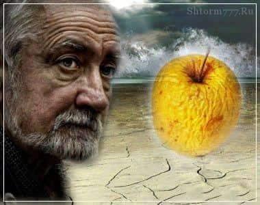 Почему человек стареет