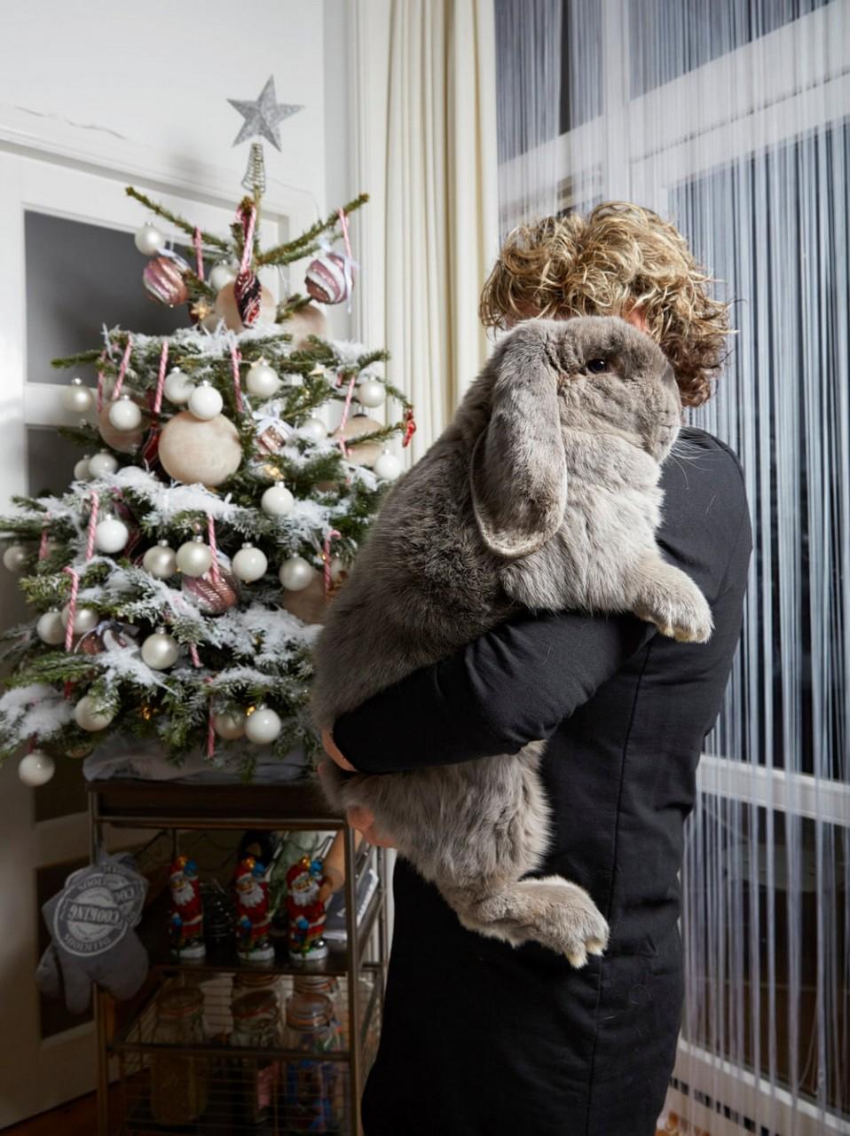 Портреты амстердамских домашних животных. Фотограф Изабелла Розендал 1