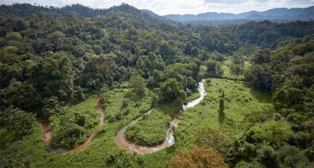 В джунглях Гондураса нашли р…