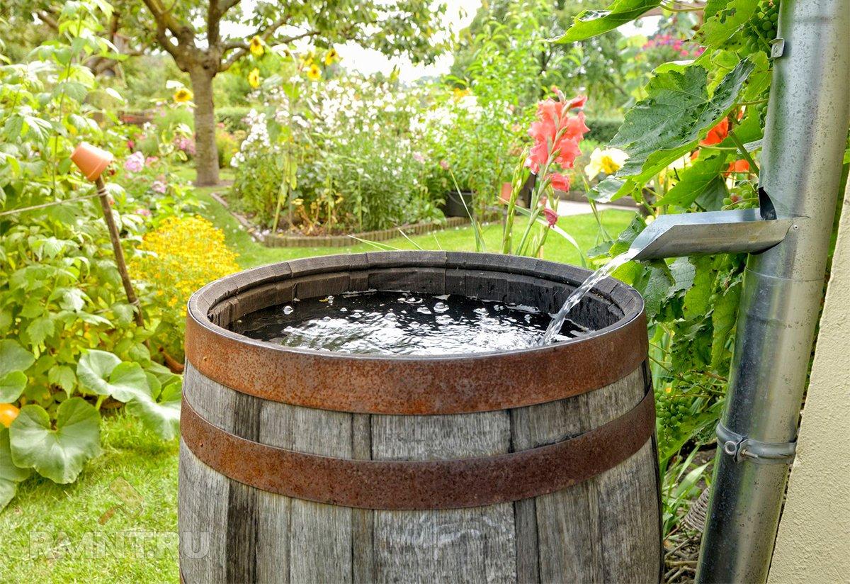 Организация сбора дождевой воды на участке