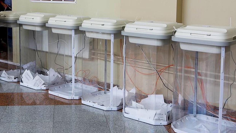 Политолог Асафов объяснил популярность онлайн-голосования в Москве Политика
