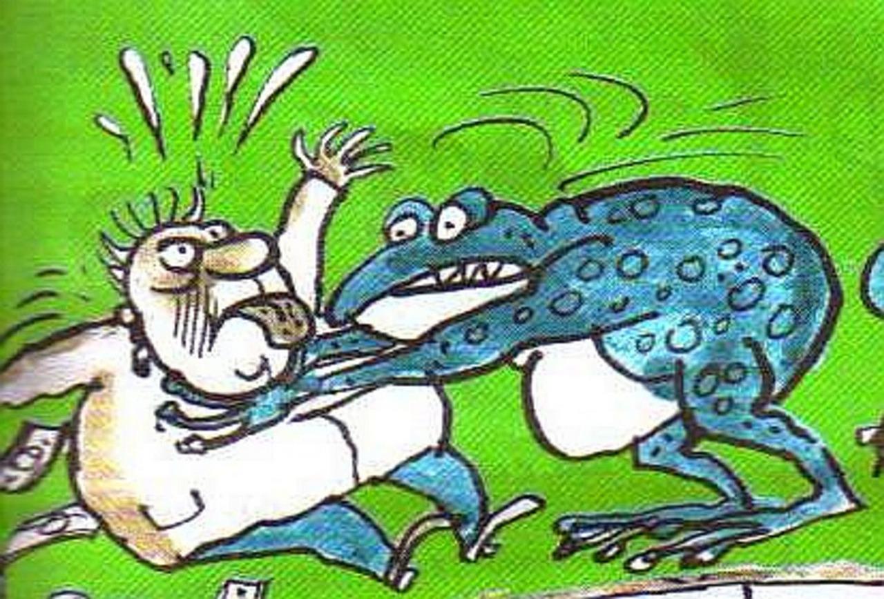 Прикольная картинка жабы которая душит, для осени