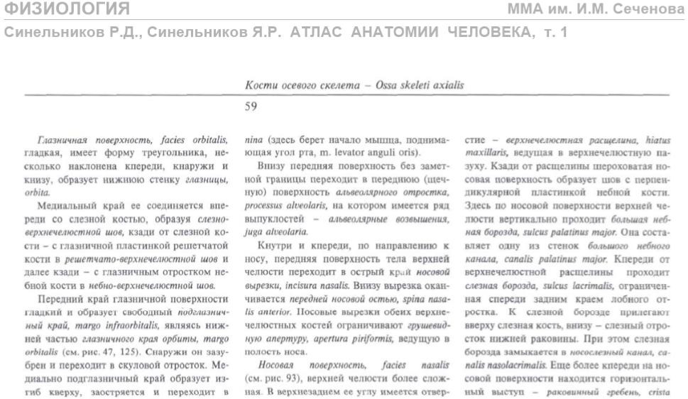 Атлас анатомии человека 6