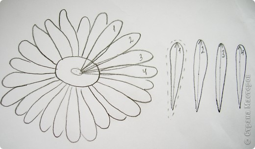 Делая ромашки для подарка к 8 марта решила показать вам поэтапно как делаются самые простые цветы из соломки с приданием полуобъема. МК для начинающих, кто еще не умеет работать с соломкой, поэтому все подробно. . Фото 4