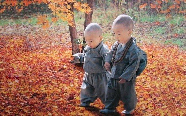 Основные правила тибетского воспитания