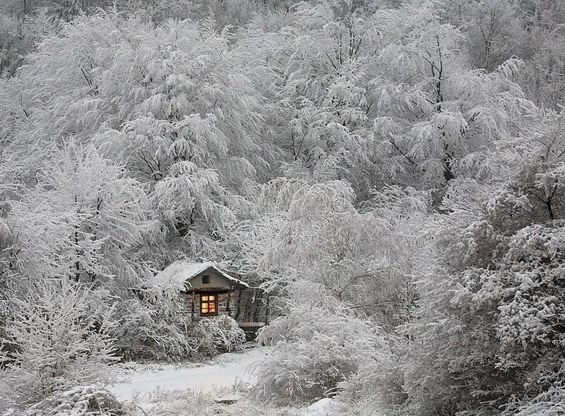 5. Охотничий домик в зимнем лесу.